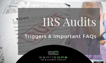 IRS Audits